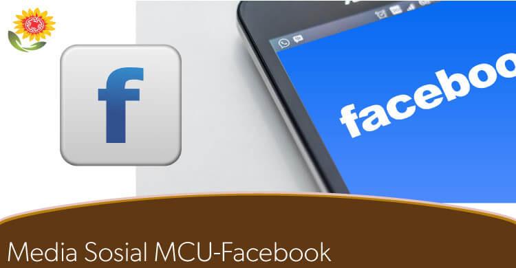 facebook mcu